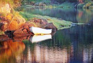Foto eines kleinen weißen Ruderboots