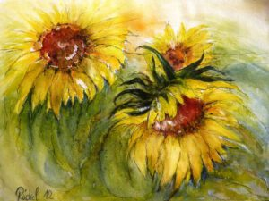 Das Aquarell zeigt Blüten der Sonnenblume